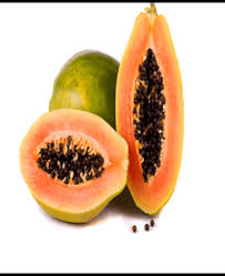 Papaya Cultivation:comprehensive Study guide