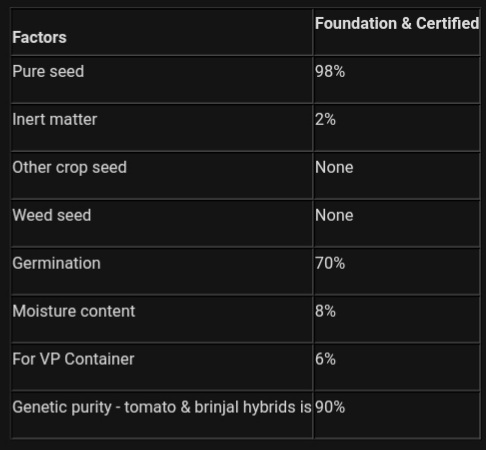 Brinjal seed production